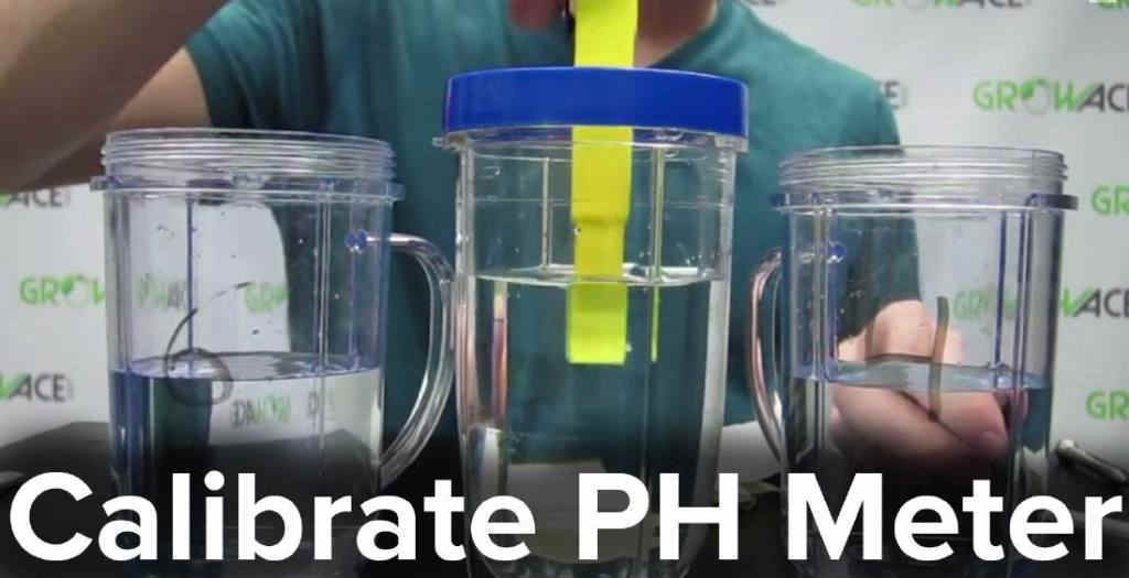 Calibrating Your pH Meter on How To Read pH Meter