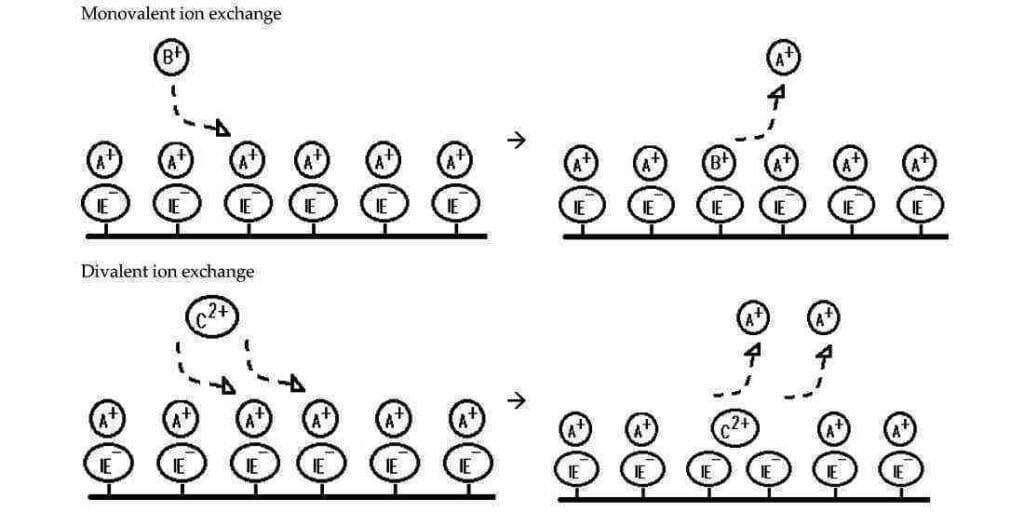 Adsorption and ion exchange