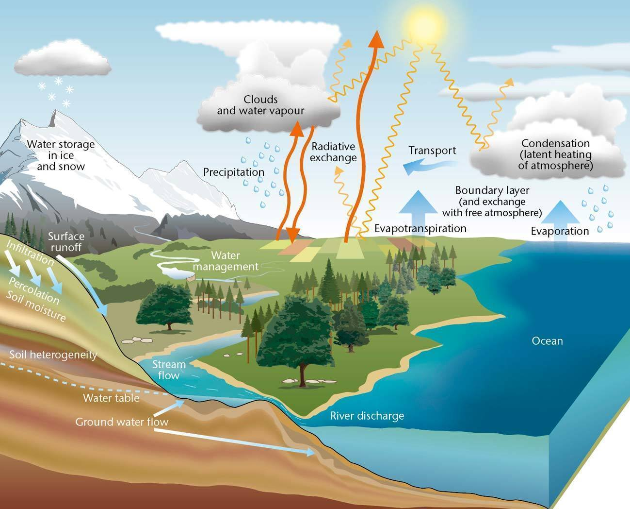 the water cycle pictures4