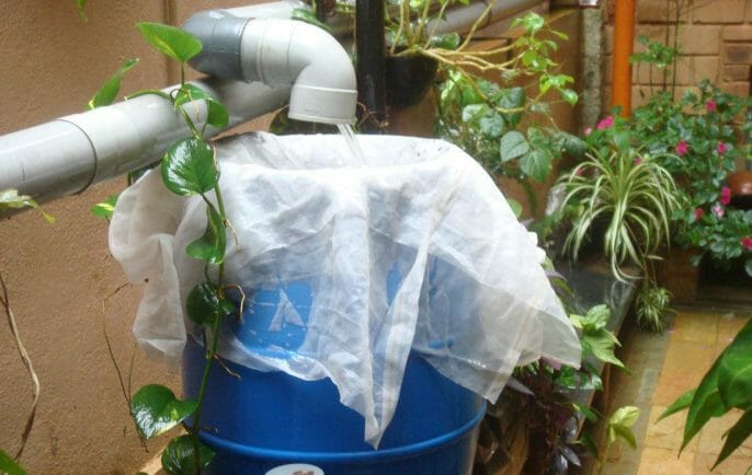 Germs and Other Contaminants of Rainwater