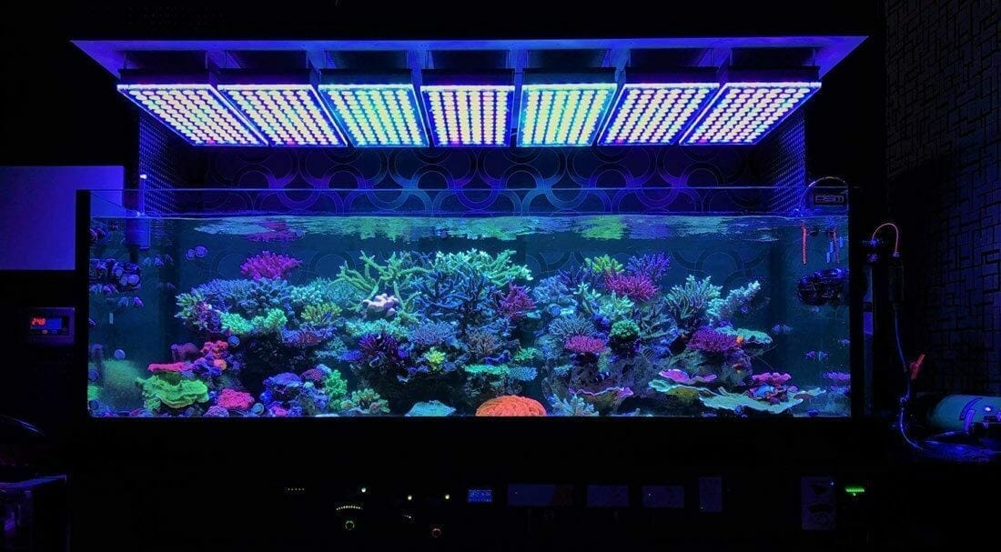 How to Soften Aquarium Water Naturally and Chemically