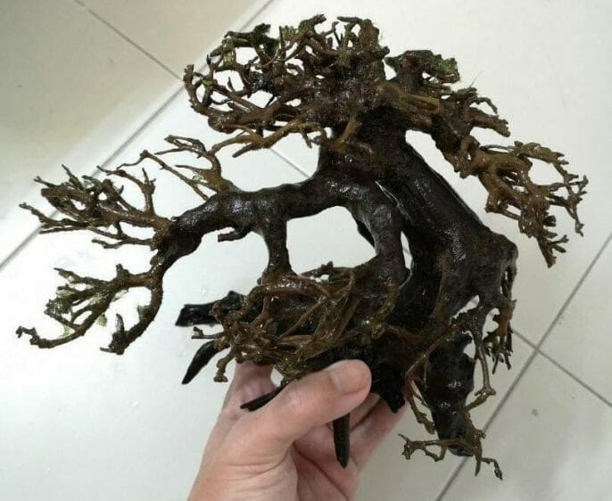 Place Driftwood in Your Fish Tank for Natural Filtration and Decoration