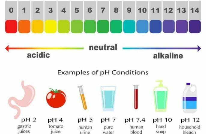 What is the pH Level of Distilled Water?